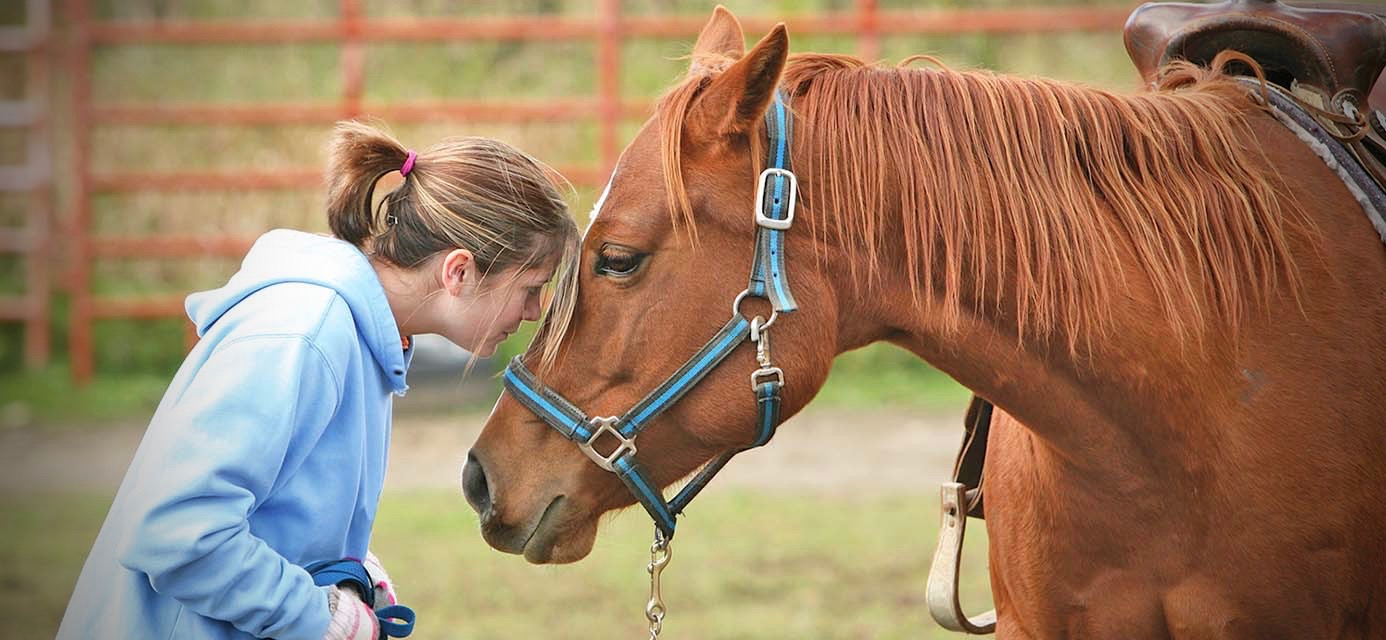 FREE EQUINE THERAPY FOR COVID-19 FRONTLINERS