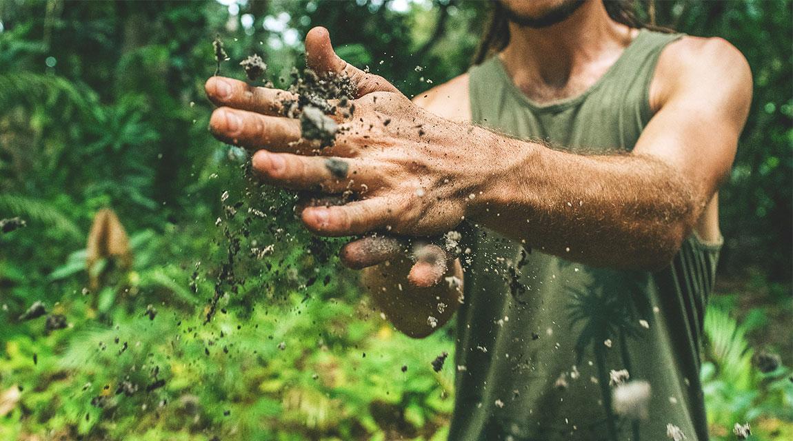 Newport Academy mental health resources: gardening for Mental Health