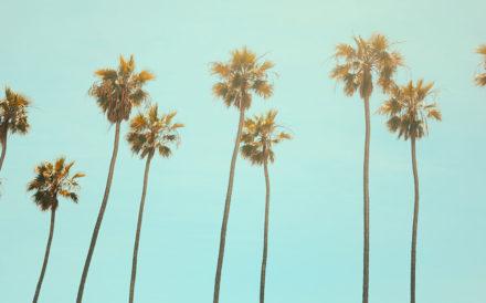 Newport Academy Treatment Resources: Los Angeles addiction treatment