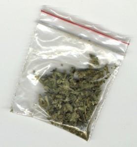 Identifying drugs: Marijuana