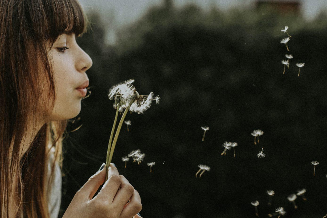 MINDBODYGREEN: Dandelion_Flower_Newport_Academy