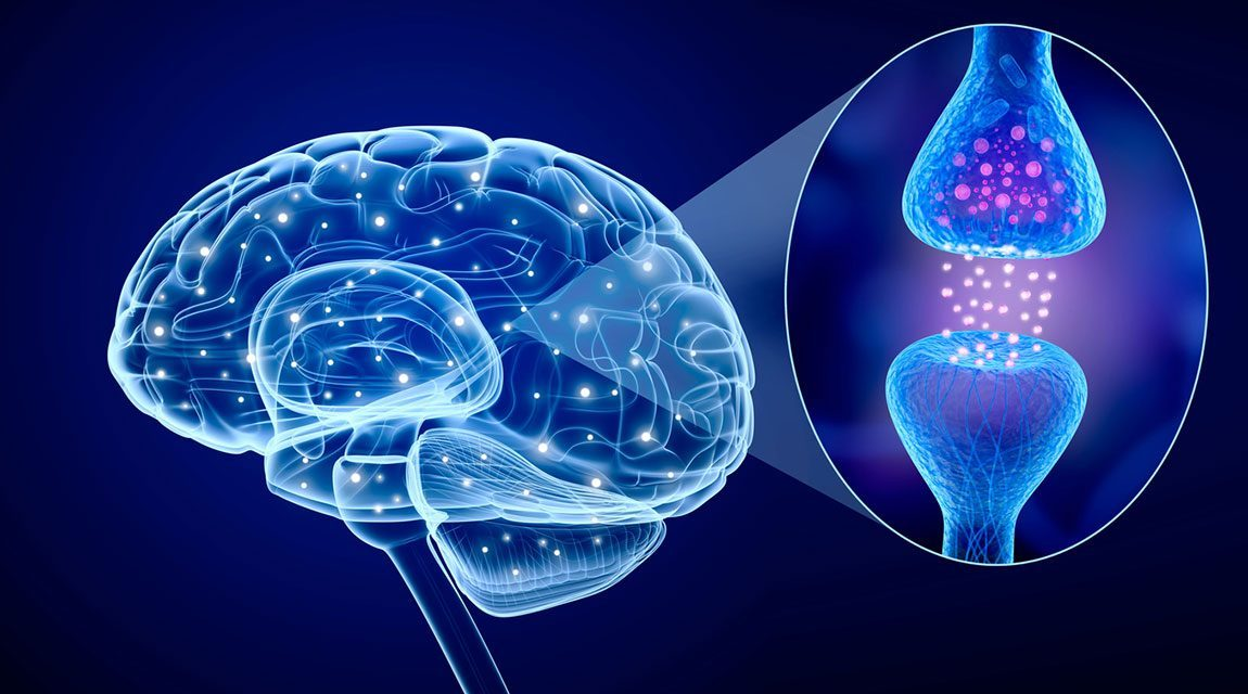 Newport Academy Substance Abuse Resources: What Happens To Your Brain On Opioids